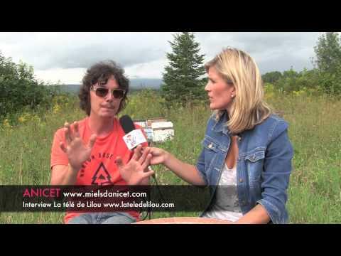 Bzzzzzz Leçons de nos amies les abeilles - Ferme-Neuve, Québec