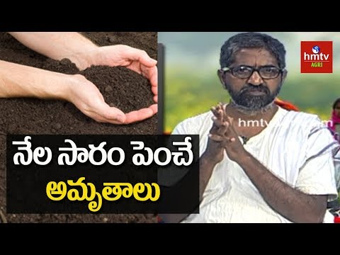 Tips to Improve Soil Fertility Naturally | Vijay Ram Live Show | hmtv Agri