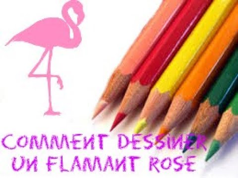 Comment Dessiner Un Flamant Rose Youtube