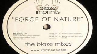 Sunshine Anderson ‎– Force Of Nature (Blaze Roots Vocal Mix)