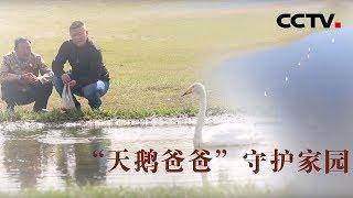 [中华优秀传统文化]爱家乡 护家园| CCTV中文国际