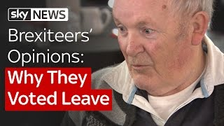 Brexiteers Opinions: Why They Voted Leave