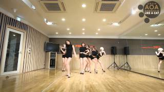 Video 王牌女神AOA - Like a Cat 舞蹈練習版 download MP3, 3GP, MP4, WEBM, AVI, FLV Juli 2018