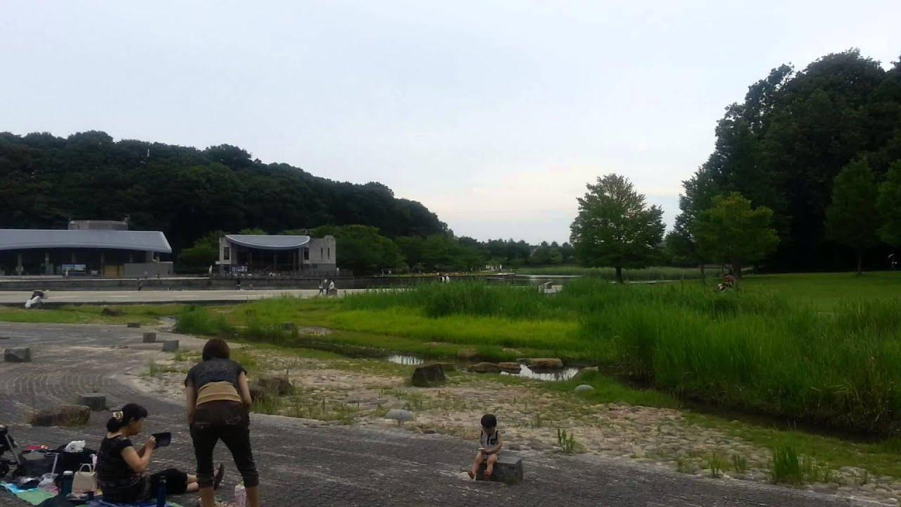 JapanForever In diretta dal Giappone - Parco del 21° secolo a Matsudo
