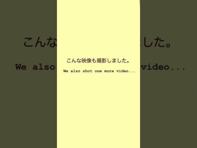 嵐 インスタ ストーリー 動画