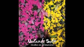 Volando solo  -  Ocobos en primavera - Álbum Ventana abierta