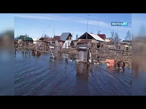 20 дворов и 2 дома остаются подтопленными в селе Налимск Среднеколымского района
