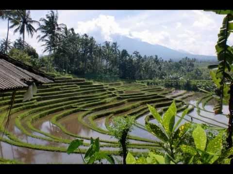 Bali honeymoon trip - part1