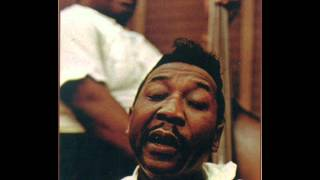 Muddy Waters - Good Morning Little School Girl