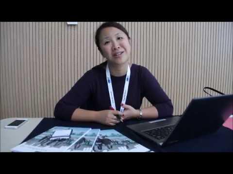 Sui Yip London South Bank University about SRT