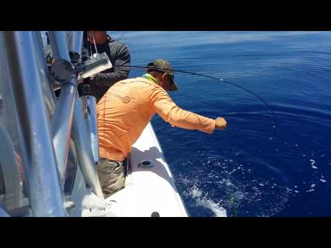 Florida welcome NY's bros Offshore Fishing 7