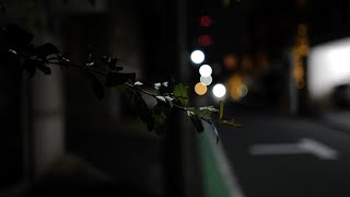 【Tokyo Vlog】Leica Q2でラフに撮影してみた