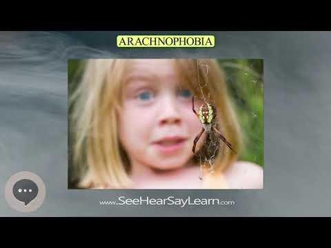 arachnophobia- -phobias,-fears,-and-anxieties-😲😱🤪