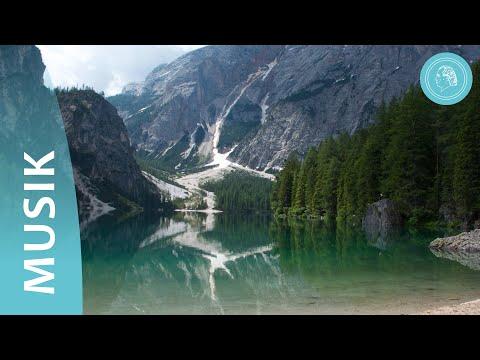 (SUB) ASMR EDIBLE BRAIN JELLY CANDY MARSHMALLOW Mukbang EATING SOUNDSKaynak: YouTube · Süre: 10 dakika40 saniye