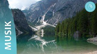 Die Klänge der Natur – Spaziergang durch das Naturreich mit Musik von Bruno Gröning-Freunden