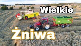 #241- Wielkie Żniwa 2019-  Największe pole z pszenicą rozpoczęte! Obiad na polu ? :D