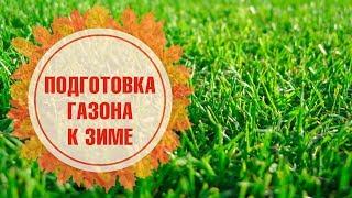 видео Готовим газон к зиме