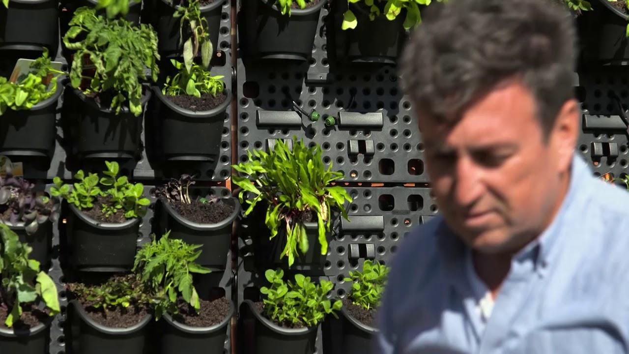 The Garden Gurus   Holman Greenwall Vertical Gardening Kit