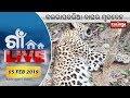 GAON LIVE 05 FEB 2019 || Kalinga TV