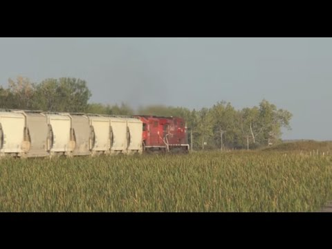 (HD)  CP Rail Freight Crosses Sheyenne National Grasslands in North Dakota