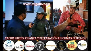 CACHO PRIETO: CRIANZA Y PREPARACIÓN EN CLIMAS EXTREMOS