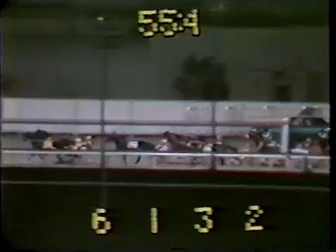 1982 Genghis Khan Meadowlands Track Record