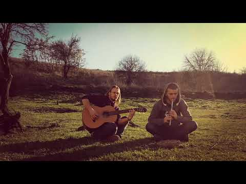 Woodnitza  Foggy Dew Irish folk song  Tin Whistle & Acoustic Guitar