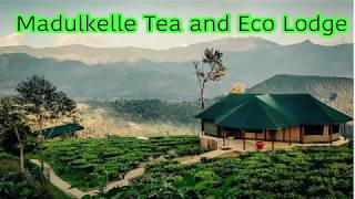 Madulkelle Tea and Eco Lodge by Life Travels Kandy