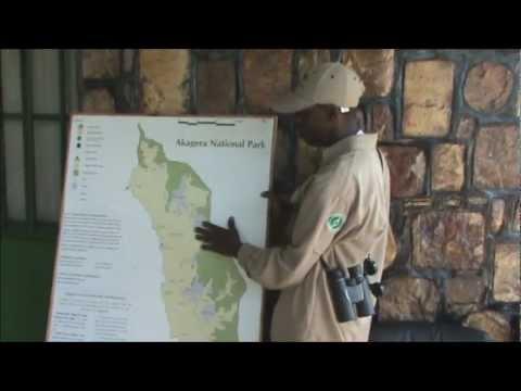 Safari in Rwanda: Akagera National Park
