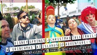Download Video Christmas Tree Trail & 'Grinchmas'!!  |  Disney World / Universal Vlog December 2018 MP3 3GP MP4