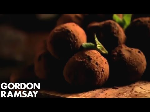Hand-made Mint Chocolate Truffles (Part 1) Gordon Ramsay
