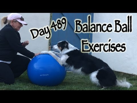 Day 489: Balance Ball Exercises