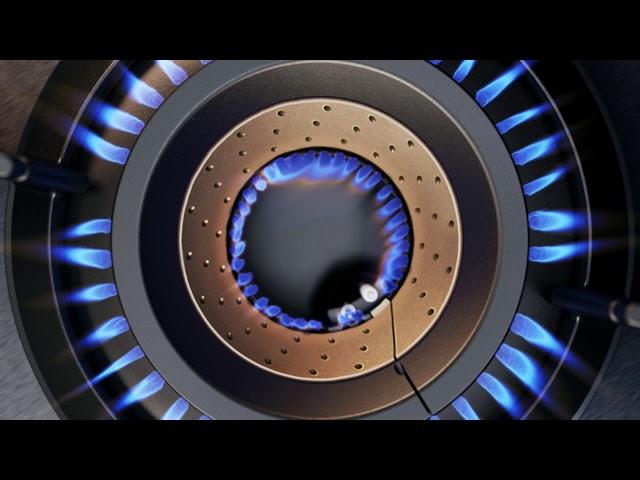 Газовая поверхность с конфоркой WOK