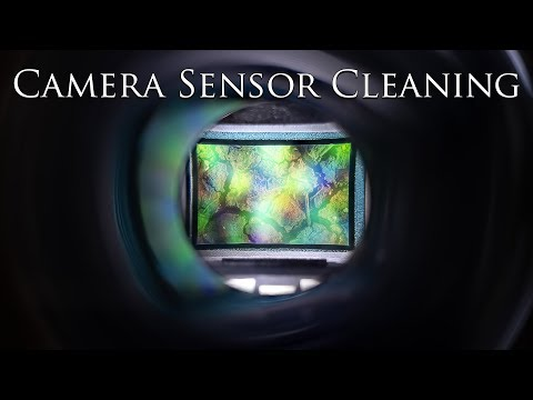 Camera Sensor Cleaning - How to do it with a Lenspen Sensorklear Loupe Kit