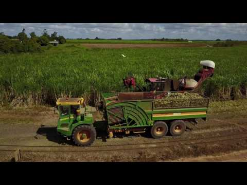 Sugar Cane Planting in Australia - Agri-Con Solutions