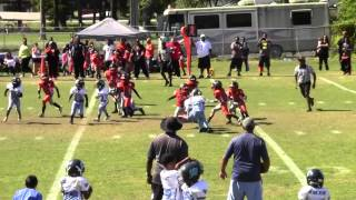 FOOTBALL HOTBED PRESENTS ESYFL TINY MITE SUPER BOWL 2014