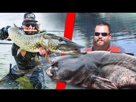 WELSANGLER Vs Fliegenfischer Beim Waller-Angeln | Fishing Wars