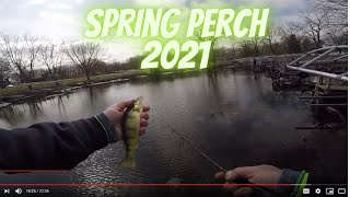 Perch Fishing Spring Pre Spawn Perch Perch Fishing 2021 Bonus Turkey Strutting Footage