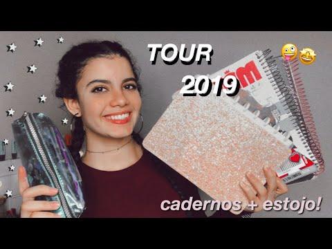 TOUR PELOS MEUS CADERNOS/MATERIAIS DE 2019! *capricho + preguiça*