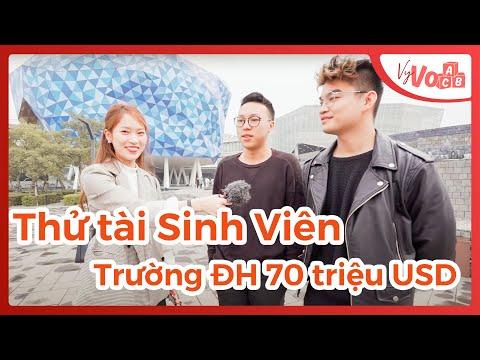 Thử tài Tiếng Anh của sinh viên Đại Học Triệu đô tại Việt Nam |  VyVocab Ep 36