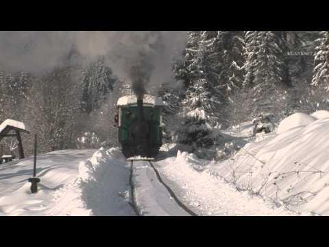 A Fairytale Winter on Čierny Hron Forestry Railroad