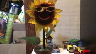 Rare 1997 Gemmy Sunny the Singing Sunflower! #2 with sunglasses!