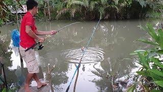 Thử câu cá sông nhỏ trước cửa nhà. điểm câu giải quyết cơn ghiền | Săn bắt SÓC TRĂNG |