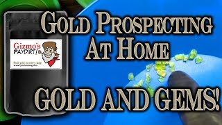 Gold Prospecting At Home #5 - Lynch Mining - Gizmos Gold + Gem Paydirt