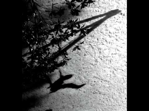Thumbnail: Max Richter - On the Nature of Daylight