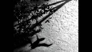 Max Richter - On the Nature of Daylight thumbnail