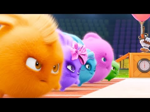 Sunny Bunnies - OLYMPICS COMPILATION | Videos For Kids | Funny Videos For Kids Videos For Kids
