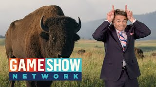 NEW Episodes of America Says Coming May 31! | Game Show Network
