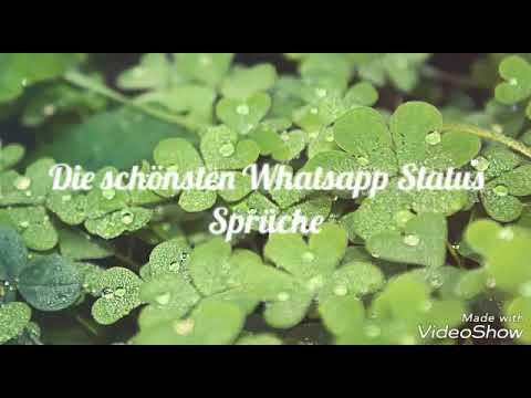 Schöne Whatsapp Status Sprüchekat Cle