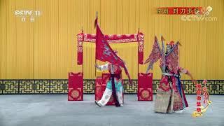 《中国京剧像音像集萃》 20191123 京剧《对刀步战》| CCTV戏曲